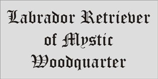 Mystic Woodquarter